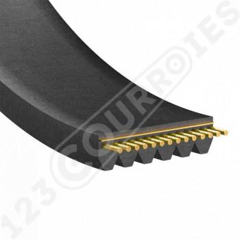 Le modèle de Courroie poly-v 6PJ309 - 6PJ309